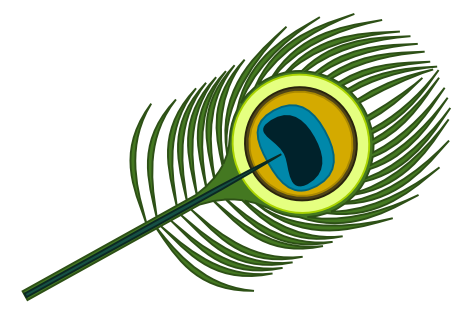 peacock-feather-walkthrough-final.png